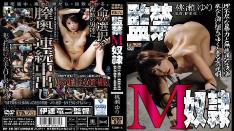 DTRS-031 Confinement M Slave Wanton Violence And Ruthless Pleasure / Bottomless Swamp To Fallen By Yuku Tragedy Of Phrase Woman